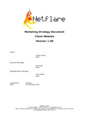 Netflare_Marketing_Strategy_Template