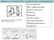 Operant Conditioning-Fall 2008