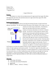 Copper Sulfate Lab.pdf