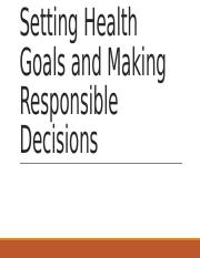 #3 Wellness powerpoint goals and decisions