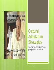 Cultural Adaptation Strategies.pptx