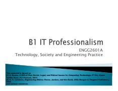 B1_IT Professionalism