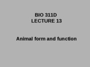 Lecture 13 animal form and function posted