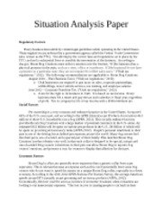 Situation Analysis Paper