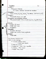Digestion Notes
