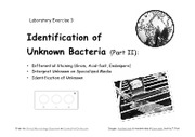 Lab__3b_Identification_of_Unknown_Bacteria_-_Part_II