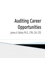 Auditing Career Opportunities.pptx