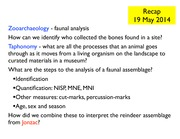 8a+Zooarchaeology