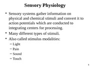 Chapter 7 - Sensory Physiology F2014.pptx