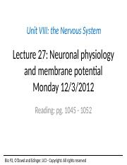 Lecture+27+Neuronal+physiology+to+post