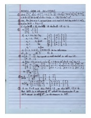 matrices.and.matrix.applications.EXAM 2B SOLUTIONS