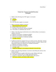 Enzyme Controlled Reactions Worksheet complete 1.doc