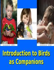 Bird lecture.ppt