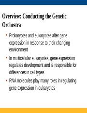 Lectures 31-33 Regulation of Gene Expression