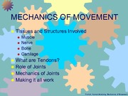Mechanics_of_Movement