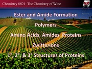 04-06_2015_Polymers&Proteins
