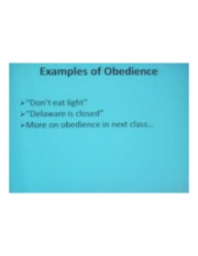 PSYCH 360 Social Psychology - Example of Obedience