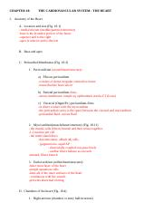 Ch 18 outline.doc