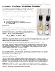 Cellular_respiration_lab_.pdf