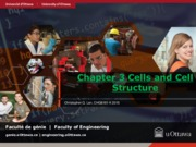 Lecture 3 Cells and Cell Structure for Biopharmaceutics and Fermentation Engineering