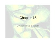 Chapter 15 and 16 cell biology
