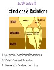 L20_Extinctions_Radiations_notes
