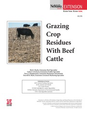 Grazing Crop Residues with Beef Cattle-1