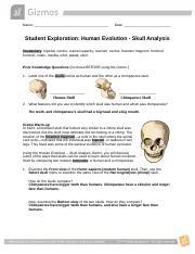 Student Exploration- Human Evolution - Skull Analysis ...
