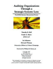 Auditing Organizations through s Strategic Systems Lens