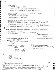 Proteins notes