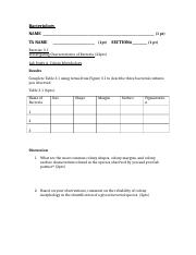 FA16_Bacteriology_Student Worksheet_Foundations