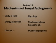 Lecture 14 - Mechanisms of Fungal Pathogenesis