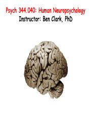 Topic 1 Lecture 01 Neuropsychology and Brain Tour.pdf