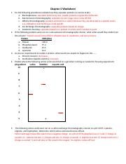 Chapter 5 Worksheet answers