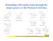 Lecture14Chem455-505F14(1)