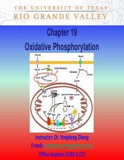 BIOCHEM CH19 Lecture19_oxidativephosphorylation.pdf