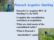 chapter 3 peacock starling consolidation Fall 2013 Sec1