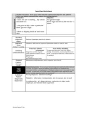 ND2 care plan form 226 (1)