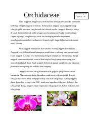 Teks Lho Docx Orchidaceae Michelle Angelica X Ips 3 15 Suku Anggerek Anggrekan Orchidaceae Merupakan Satu Suku Tumbuhan Berbunga Dengan Anggota Course Hero