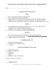 Criminal Courts and Criminal Justice System Survey Assignment Rubric