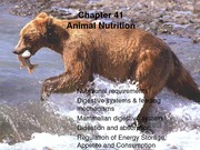 20+nutrition+_+digestion-14