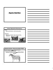 ANSC 3307_Equine Nutrition_Notes (2)