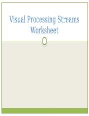 Visual Processing Streams Worksheet KEY.pptx