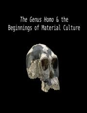 6 The Genus Homo.pptx