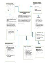 Chorioamnionitis concept map.docx - Nursing Diagnosis Risk ...
