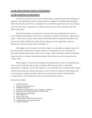 3.0 The organization and its environment.docx