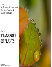_Lecture_Notes_Part_1_Transport_System_in_Plants