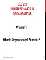 OLS 252 Chapter 1 - What is Organizational Behavior.pdf