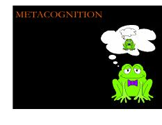 Lecture 21-22 Cognition (Metacognition)