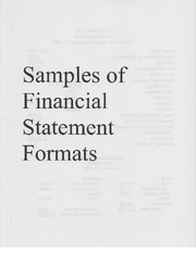 Samples of Financial Statements(1)